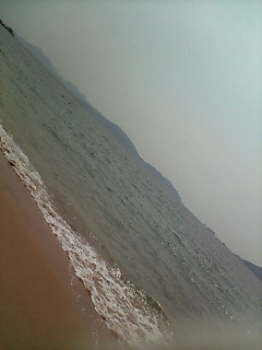 日本海です
